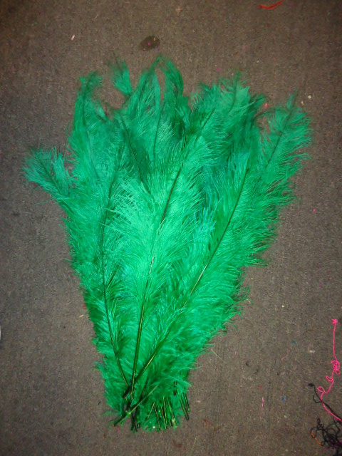 Ostrich Feather Plume 18-24 INCH GREEN