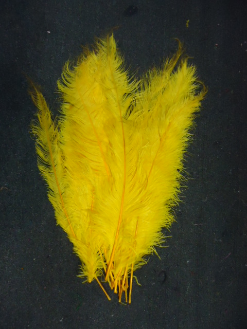 Ostrich Feather Plume 18-24 INCH YELLOW GOLD