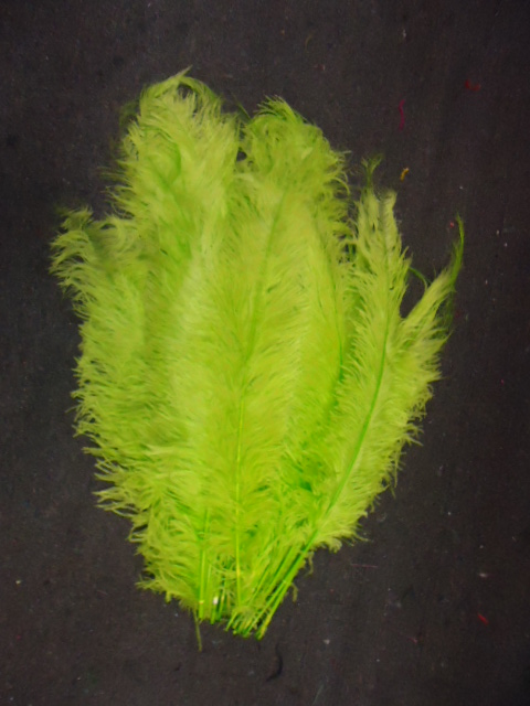 Ostrich Feather Plume 18-24 INCH LIME