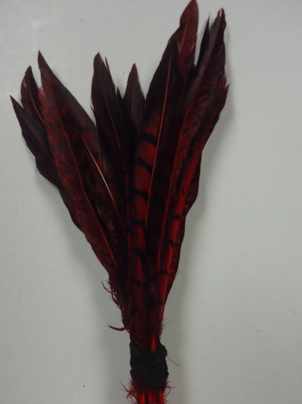 Short Lady Amherst Pheasant Pheasant Feathers