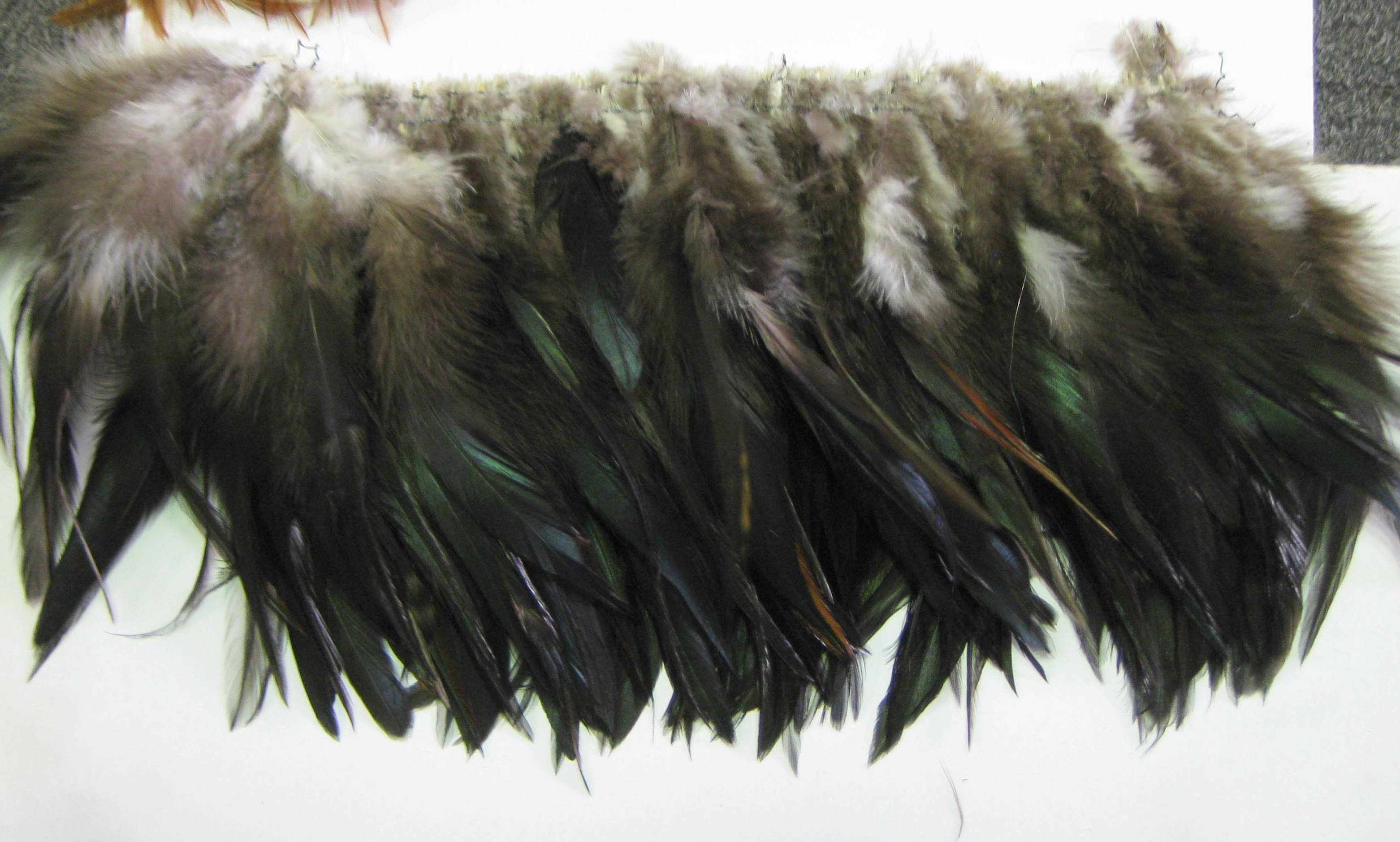 HACKEL FEATHER
