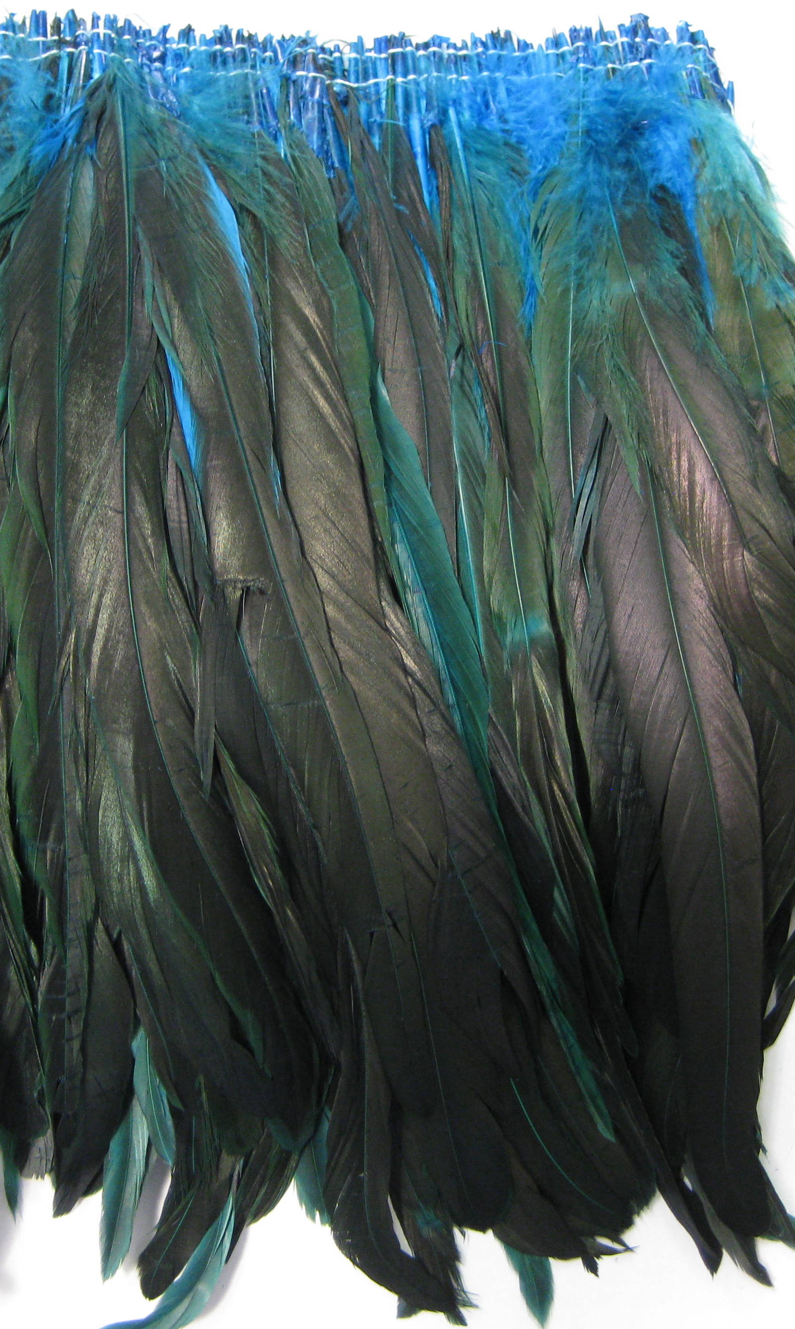 COCK FEATHER
