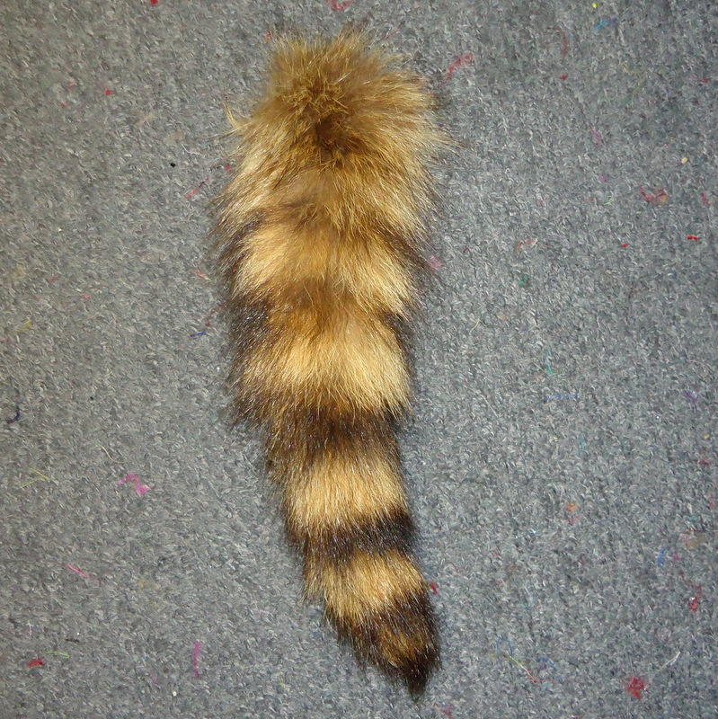 T-1 Raccoon Tail