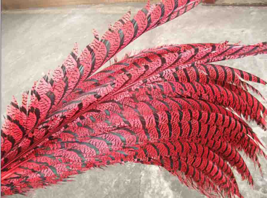 PHEASANT TAIL FEATHER RED